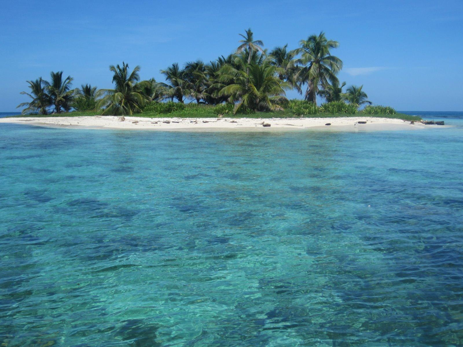 stranded on a desert island essay