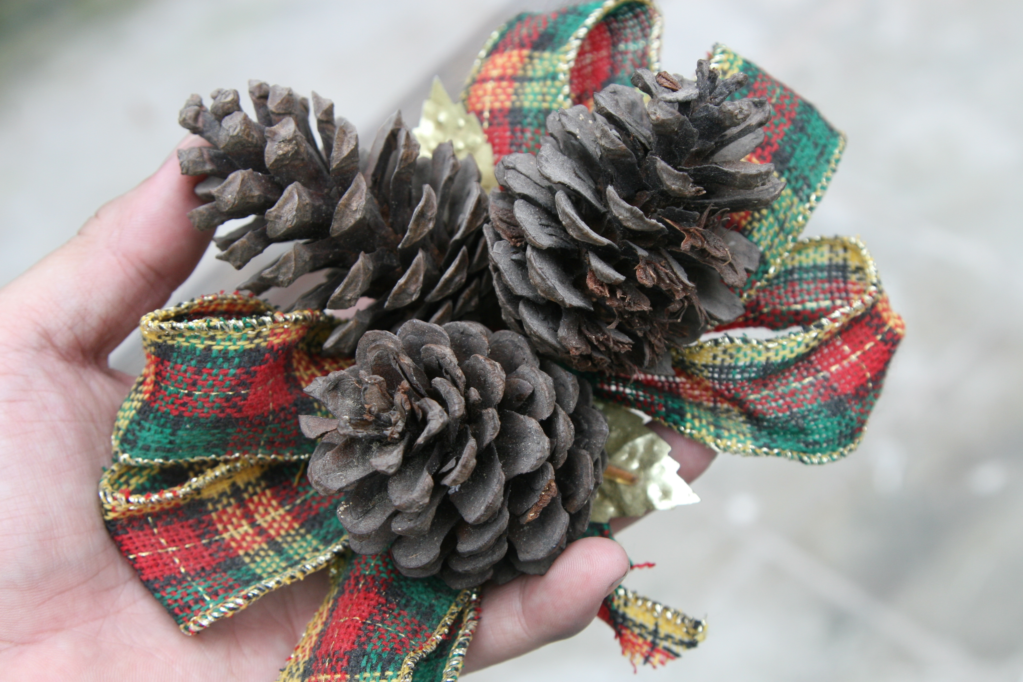 Scented Pinecones