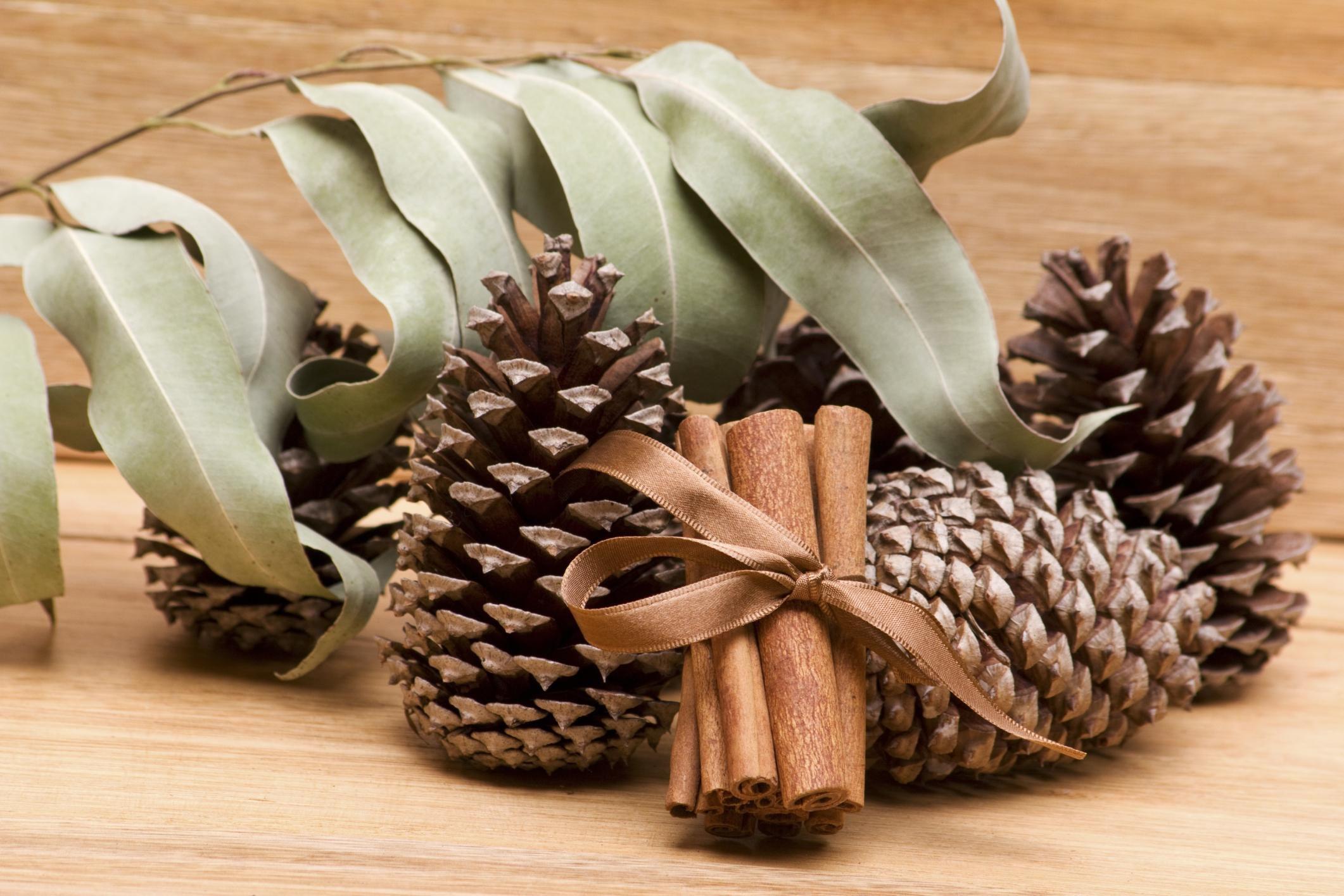 Pine scent in pot